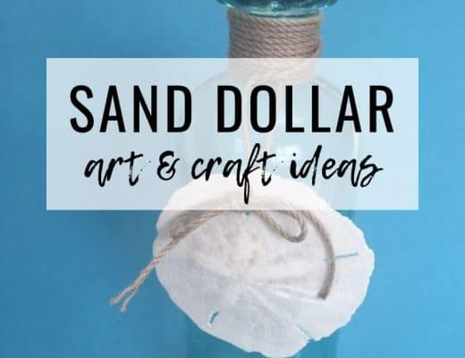 photograph about The Legend of the Sand Dollar Printable named Seas Crafts Archives - Seas Your Working day